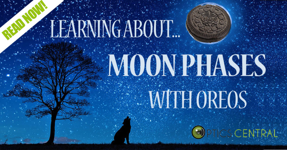 Celebrating National Science Week Day 4 - Moon Phases