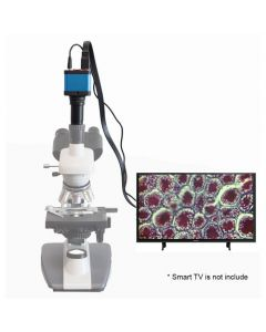 Saxon 10MP Microscope Digital Imager