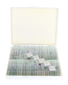 Saxon Biological Microscope Prepared Slides (100 Specimens)